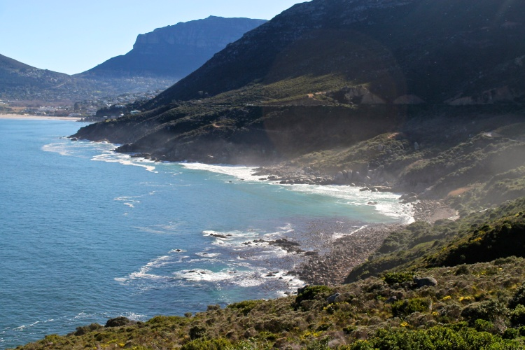 On Chapman's Peak, looking out over Hout Bay