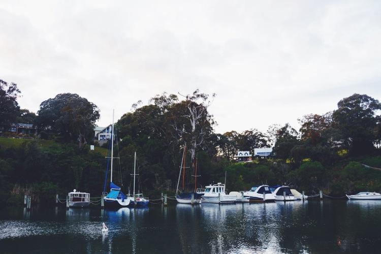 Boats on Chinamans Creek.