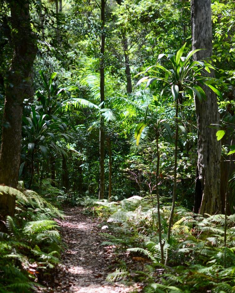 Mt Nebo, Brisbane